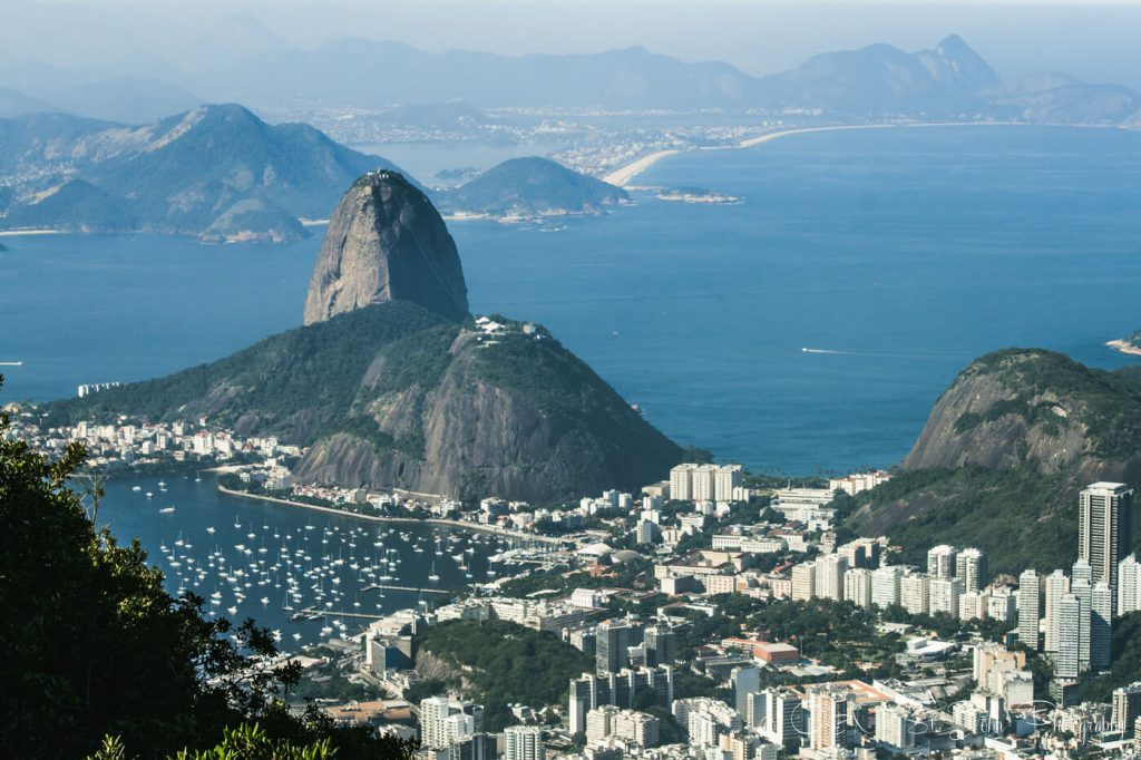 A picture of Rio taken by Oksana & Max.